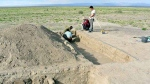 An image of the archaeology dig site. (Image by Japanese-Mongolian joint research team)