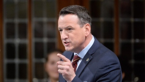 Natural Resources Minister Greg Rickford speaks in the House of Commons, on Thursday, Feb. 26, 2015. (THE CANADIAN PRESS/Adrian Wyld)