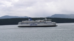 BC Ferries has cancelled sailings amid wind warnings in the Greater Victoria and Southern Gulf Islands regions.