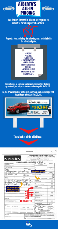 W5 APA Infographic