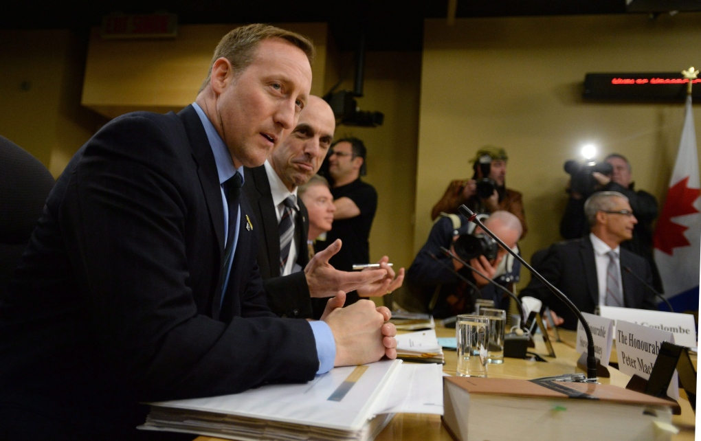 Steven Blaney and Peter MacKay at Bill C51 hearing