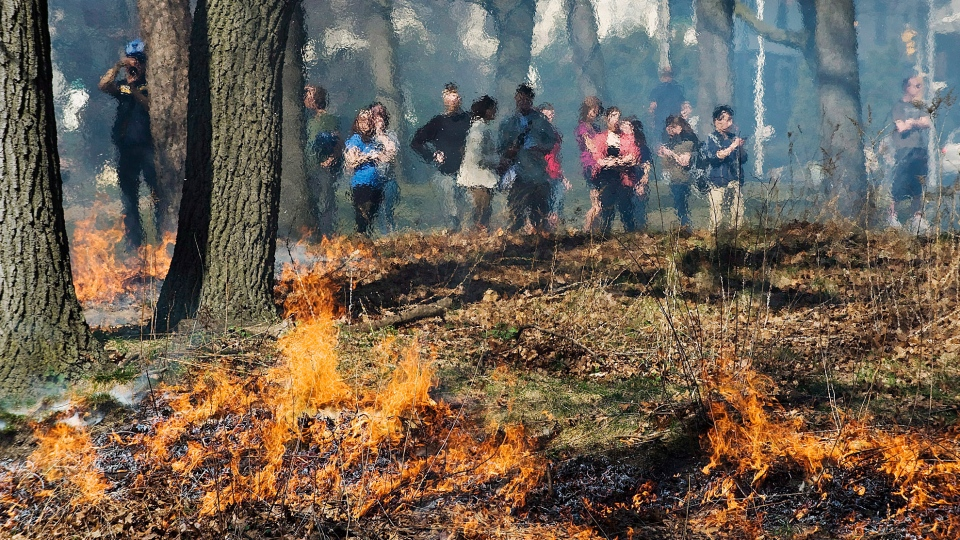 Spectators look on while the City of Toronto Parks, Forestry and Recreation division undertake a controlled burn of debris in High Park in Toronto on Wednesday March 21, 2012. (Aaron Vincent Elkaim /THE CANADIAN PRESS)