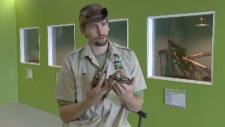 Maritime Reptile Zoo