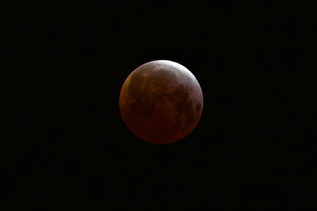 blood moon january 2019 red deer - photo #3