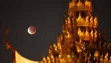 Lunar eclipse/8.jpg
