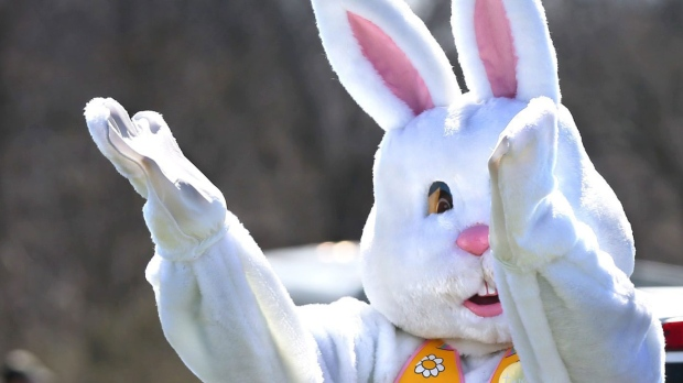 Answer Man: Hare's the answer to why rabbits bring Easter eggs