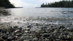 CTV News Channel: Radioactivity off B.C. coast