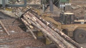 Lumber Mills