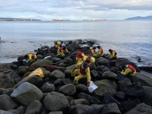 Crews along Vancouver's seawall help clean up the effects of a bunker oil spill earlier in the week, Saturday, April 11, 2015. (CTV)
