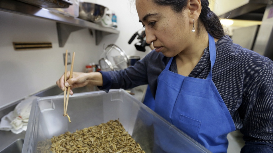 Monica Martinez sorts meal worms prior to baking them in San Francisco on Feb. 18, 2015. (AP / Ben Margot)