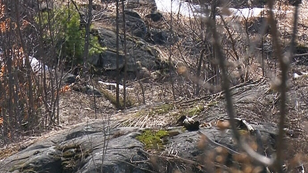 Missing boy 6 dies after he s found pinned under rocks for Landscaping rocks windsor ontario