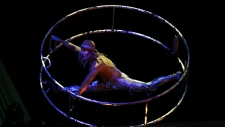 Cirque du Soleil sale not finalized