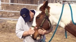 The Harper government is taking another step towards mending strained relations with veterans by funding equine therapy for those suffering mental scars from the battlefield.