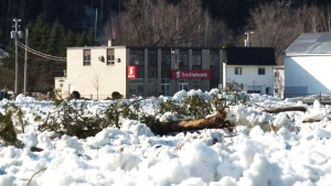 CTV National News: Ice jam leads to evacuation