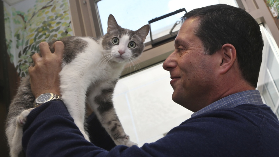 Dr. Gary Weitzman, president and CEO of the San Diego Humane Society and SPCA and author of the new National Geographic book 'How to Speak Cat', has a word with Wesley, a resident of Humane Society shelter, in San Diego, Wednesday, April 8, 2015. (AP / Lenny Ignelzi)