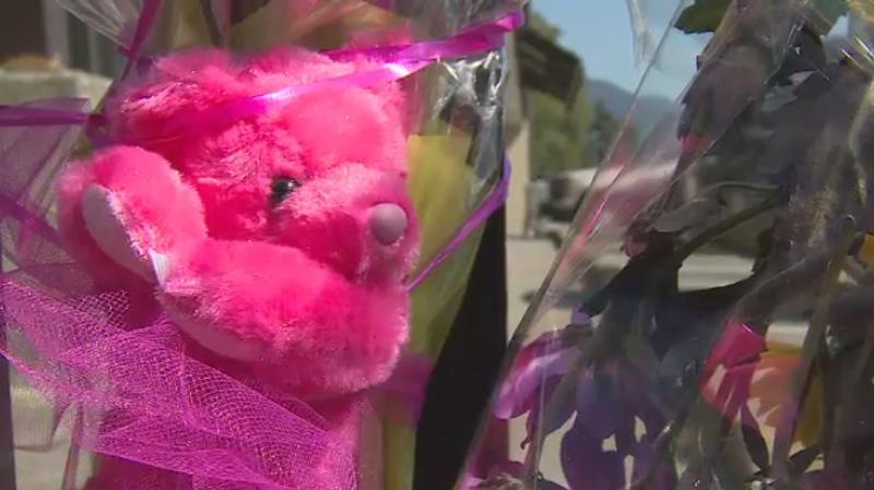 port coquitlam strip mall girl killed