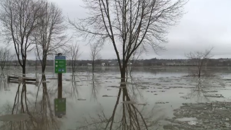 As expected, the St. John River reached flood levels in Fredericton on Thursday.