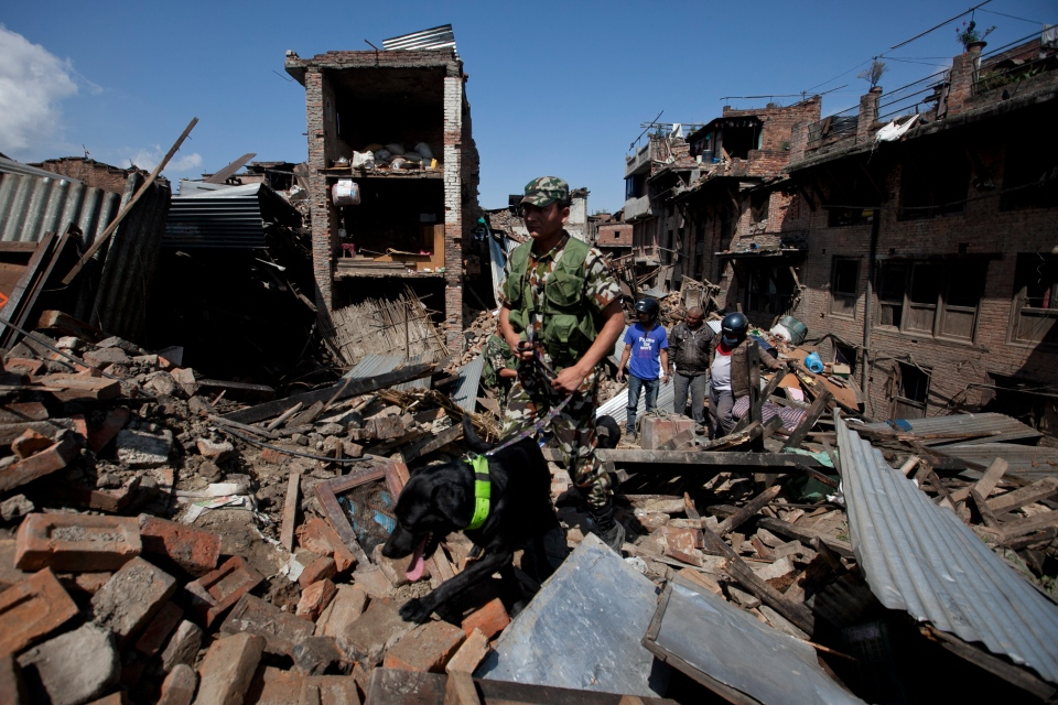 A rescue team with a sniffer dog walks at the site of destruction caused by Saturday's earthquake in Bhaktapur, on the outskirts of Kathmandu, Nepal, Monday, April 27, 2015. (AP / Niranjan Shrestha)