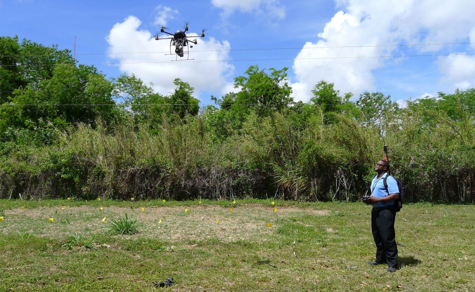 Drones brought in to protect avocado trees