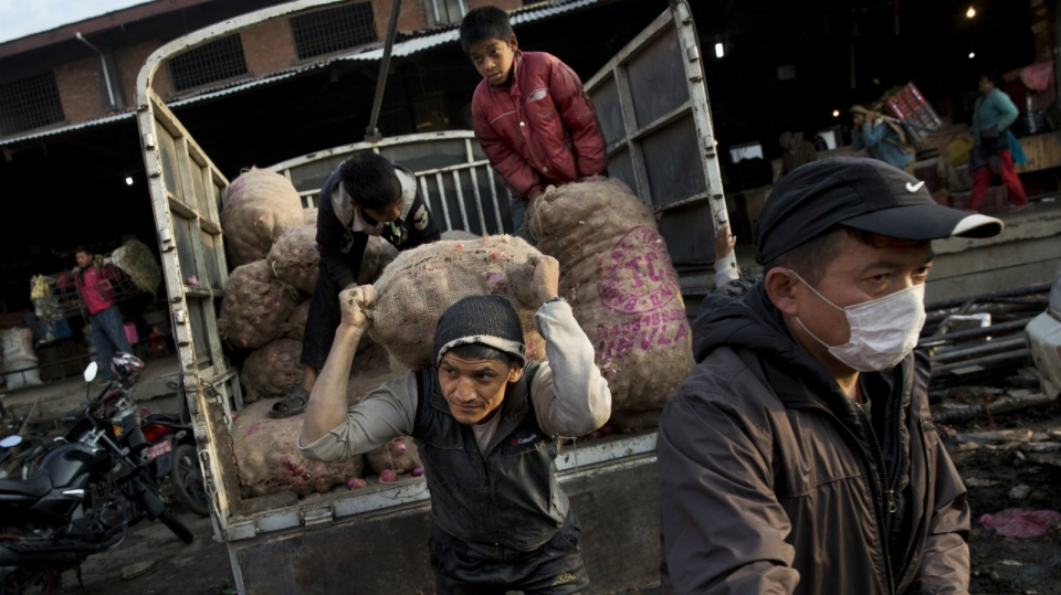 Nepalese unload potatoes at a vegetable market early morning in Kathmandu, Nepal, Wednesday, April 29, 2015. While many villages across Nepal affected by Saturday's earthquake are still waiting for rescue and relief teams, life in the capital, Kathmandu, is slowly returning to normal. (AP / Bernat Amangue)