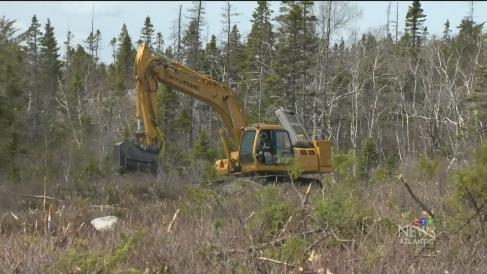 CTV Atlantic: Hiking trail to be made into shops