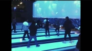 CTV Kitchener: Bowling alley brawl