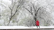 Edmonton snowstorm on May 6, 2015