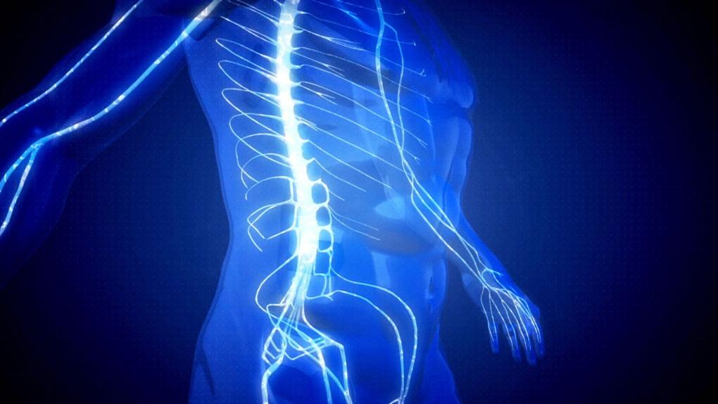 CTV National News: Living pain-free