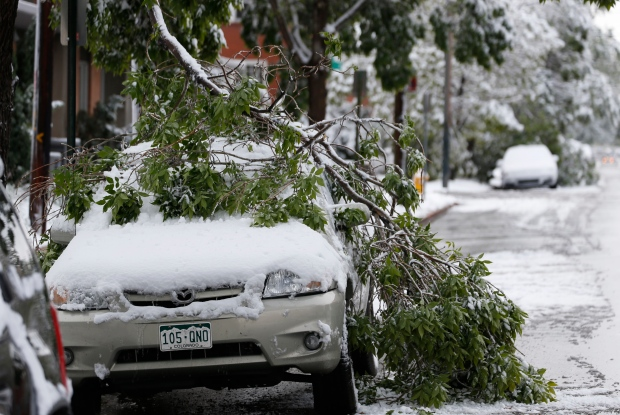 Branches broken after a wet, heavy snow cover vehicles parked on East First Avenue in Denver early Sunday, May 10, 2015. (AP / David Zalubowski)