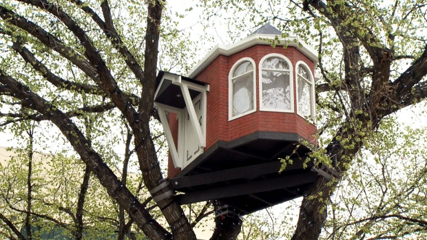 Artists mount Edmonton-style treehouses in city's downtown