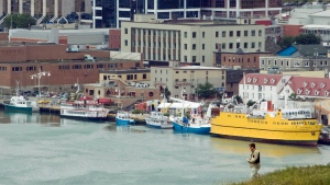 The harbour in St. John's, Nfld., is seen on Friday, Aug. 10, 2007. (THE CANADIAN PRESS/Jonathan Hayward)