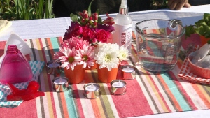 Canada AM: Frugal summer parties