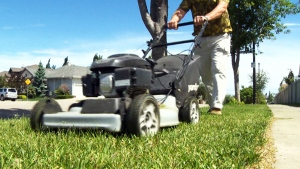 A lawn mower is pictured in this undated file photo. (CTV)