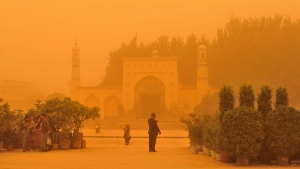 A Uighur man looks at plants outside a mosque during a sandstorm in Kashgar city in northwestern China's Xinjiang Uighur Autonomous Region, Sunday, May 10, 2015. (Chinatopix Via AP)