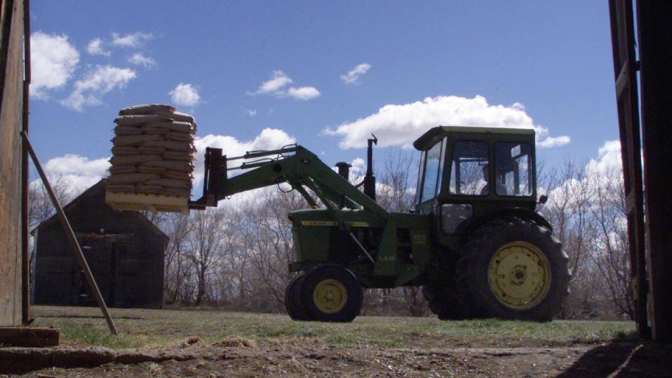 On a farm near Lisieux, Saskatchewan, on May 12, 2002. (CP / Adrian Wyld)