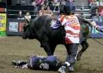 Kasey Hayes lies on the ground after falling from his ride on Shaft during the Professional Bull Riding Tour stop on March, 13, 2015 in Sioux Falls, S.D. (AP / Dave Eggen)