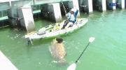 Jeff's Video: Big catch bigger than boat