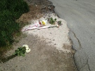 Flower are left at the spot where Jeremy Wickenheiser was killed when a pickup truck hit his motorcycle near Stratford. (Abigail Bimman / CTV Kitchener)
