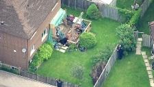 Police shoot bear north of Toronto