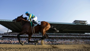 American Pharoah gallops past the grandstand with Victor Espinoza up after crossing the finish line to win the 147th running of the Belmont Stakes horse race at Belmont Park, Saturday, June 6, 2015, in Elmont, N.Y. American Pharoah is the first horse to win the Triple Crown since Affirmed won it in 1978. (AP / Julio Cortez)