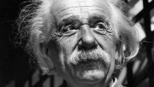 Renowned physicist Albert Einstein in Princeton, N.J. on June 1954. (AP)