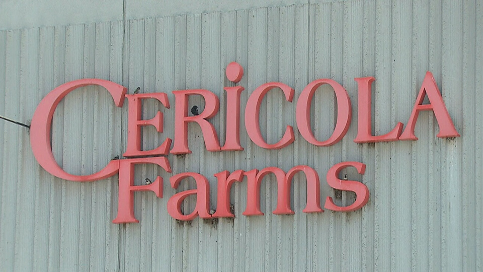 Farm accused of falsely labelling chicken products