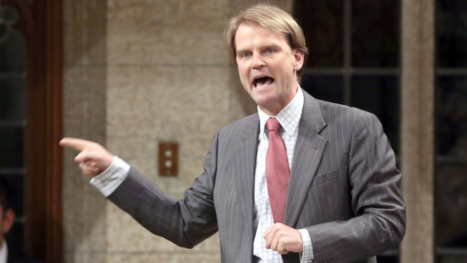 Immigration Minister Chris Alexander stands in the House of Commons during question period on Parliament Hill in Ottawa on Thursday, June 11, 2015. (Fred Chartrand / THE CANADIAN PRESS)