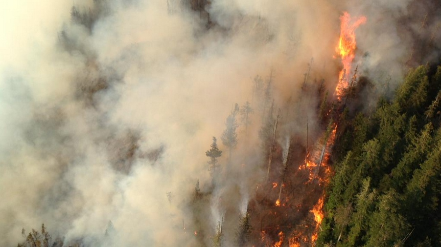 Elaho Valley Fire