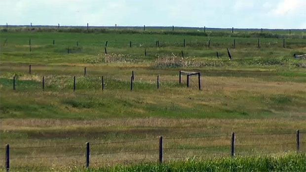 farmers, dry conditions, ranchers, drought, hay, w
