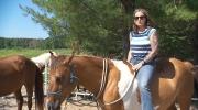 Canada AM: War Horse Project