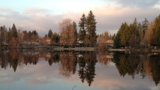 Cottages line a lake in Coquitlam, B.C.