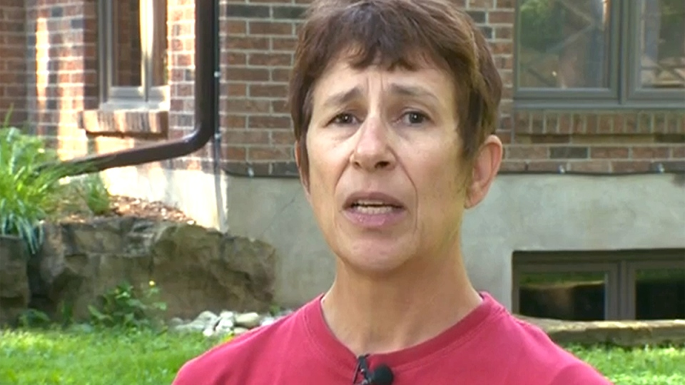 Colony of bees removed from Ontario woman's home
