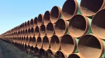 Pipes ready for the Keystone XL pipeline are shown in Gascoyne, N.D., on Wednesday April 22, 2015. (Alex Panetta/The Canadian Press)
