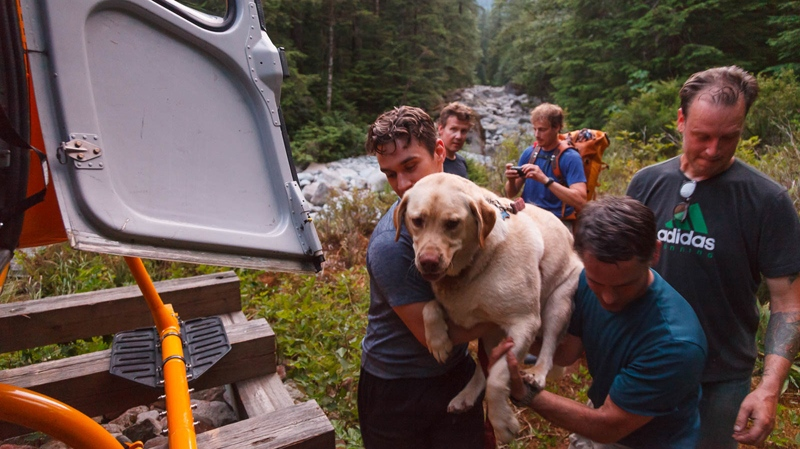 "A helicopter operator with a ""soft spot for dogs"" came to the rescue of a huge family pet after it became dog-tired and wound up stuck on a popular trail. (North Shore Rescue)"
